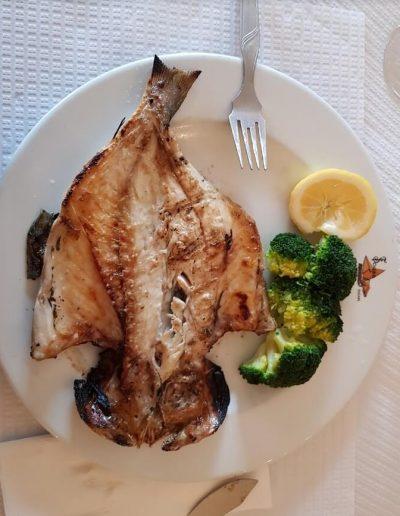 peixe restaurante no seixal
